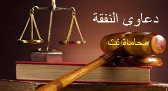 أنواع دعاوى النفقة استشارات قانونية مجانية